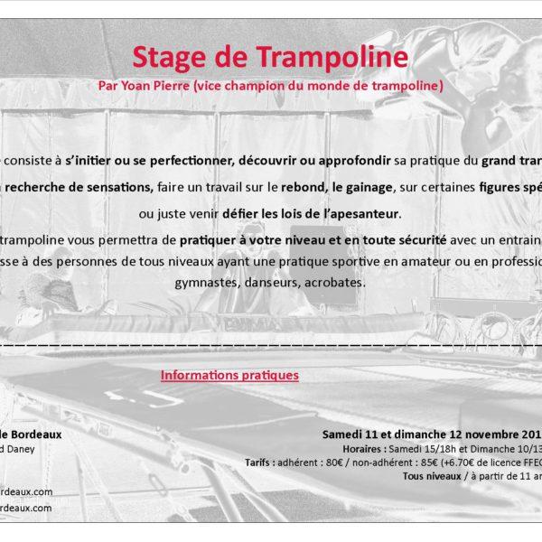 Stage de Trampoline